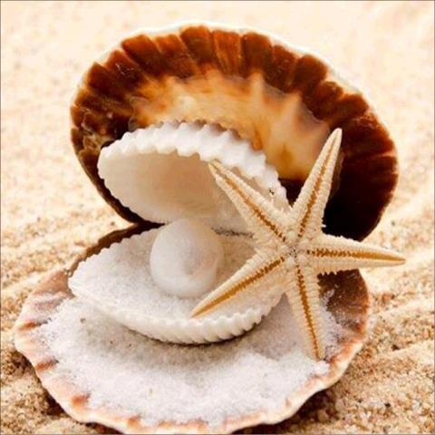 New Arrival Hot Sale Summer Beach Starfish 5d Diy Diamond Painting Kits VM9930