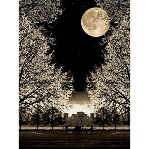 5D DIY Diamond Painting Kits Landscape Winter Moon VM92032