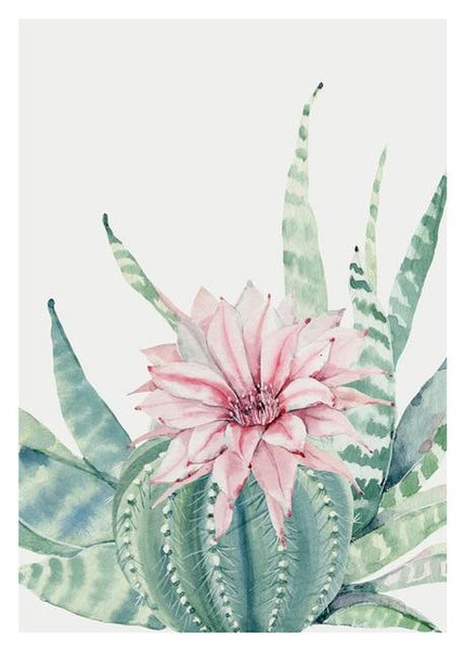 5D Diy Diamond Painting Kits Watercolor Cactus   NA0357