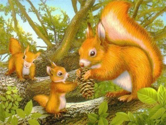 Hot Sale Full Square Drill Squirrel 5d Diy Cross Stitch Diamond Painting Kits NA00452
