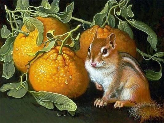 5d Diy Cross Stitch Diamond Painting Kits Squirrel NA00450