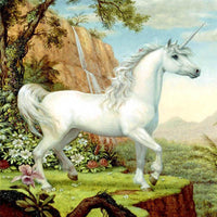 2019 5D Diy Diamond Painting Kits Cross Stitch White Unicorn VM92011