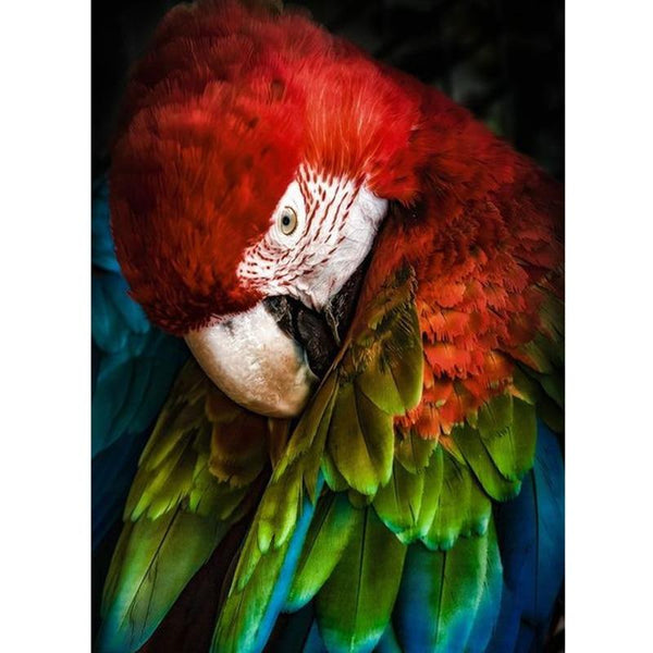 5D Diy Diamond Painting Kits Cross Stitch Mosaic Animal Parrot VM90542