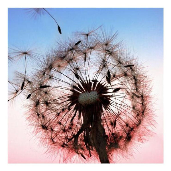 5d Diamond Painting Kits Special Dandelion Diy QB5152