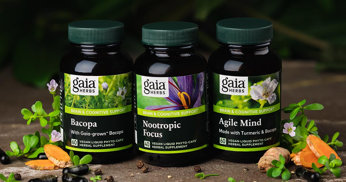 What are Nootropics? All About Herbs and Activities for Long