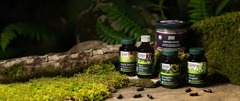 Gaia Herbs Immune Support Products
