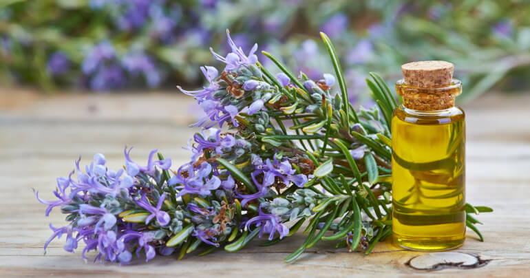 Rosemary and a vial of essential oil