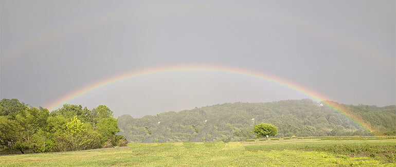 Beautiful full rainbow over the fields at Gaia Farm