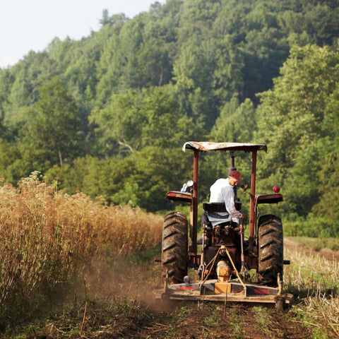 farmer plowing at gaia herbs farm