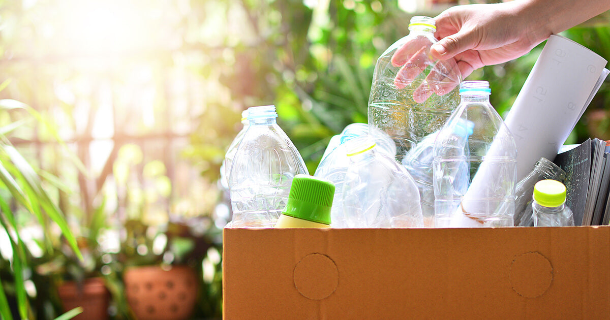 Person recycling plastic bottles