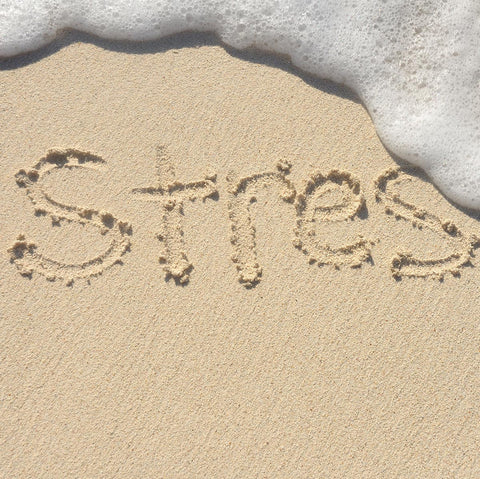 stress written in sand on beach with wave washing over last s in word