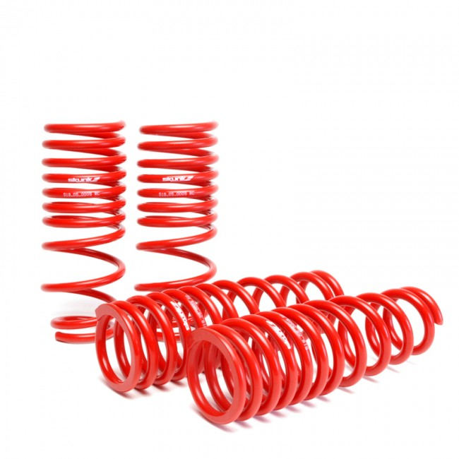 Skunk2 Lowering Springs Acura Integra GS/LS/RS/GS-R (94-01) 519-05-1560
