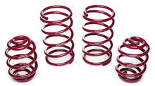 Load image into Gallery viewer, Vogtland Lowering Springs Nissan Sentra B14 (95-99) 200SX (95-98) 952110