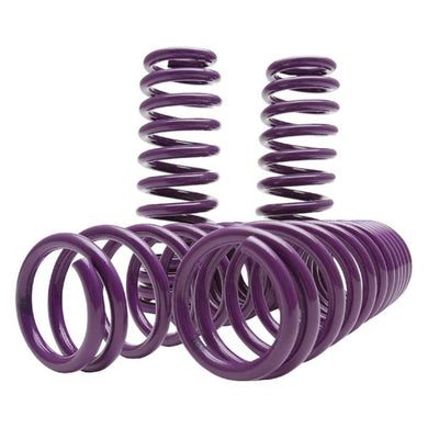 D2 Racing Lowering Springs Tesla Model 3 RWD (2018-2020) D-SP-TS-02