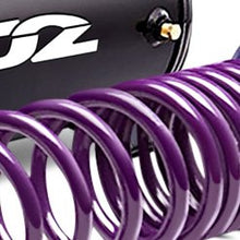 Load image into Gallery viewer, D2 Racing Lowering Springs Dodge Charger (2006-2010) D-SP-DO-01