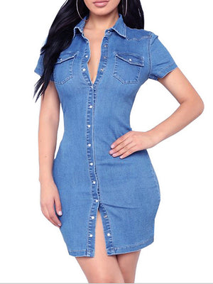 the Frenze- The Over All Denim Button Up Dress