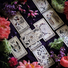 Load image into Gallery viewer, Leila + Olive Ophidia Rosa Tarot