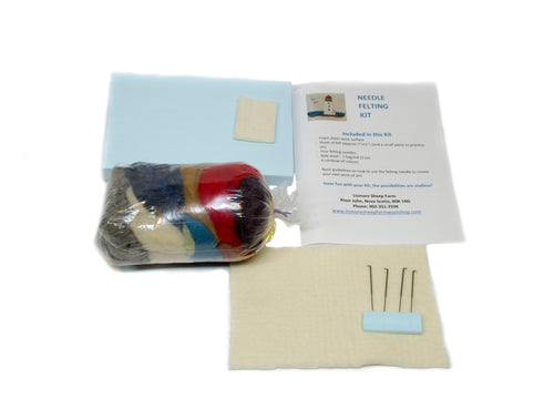Felting Project Kit - Small