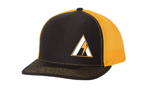 Gold Stainless Aesthetics Snap Back Hat.