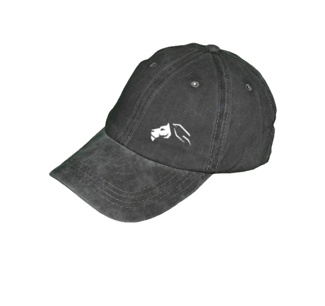 TEAM DELEON DAD HAT - UNISEX