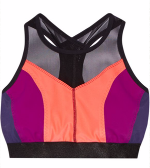 Hi-Energy Sports Bra