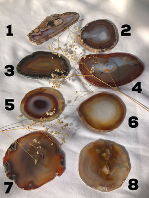 NATURAL AGATE SLICES - RETREALM