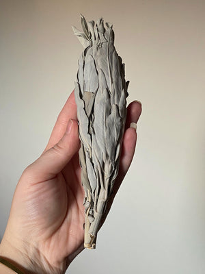 HIGH QUALITY SACRED CLARIFYING WHITE GRANDFATHER SAGE STICK