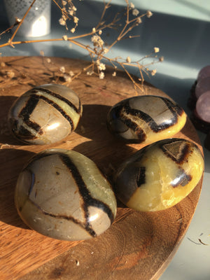 SEPTARIAN PALM STONE