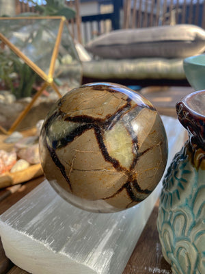 SEPTARIAN SPHERE LRG (935g) W/ WOODEN STAND - RETREALM