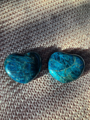 APATITE BLUE HEART PALM STONE CRYSTAL (310g)