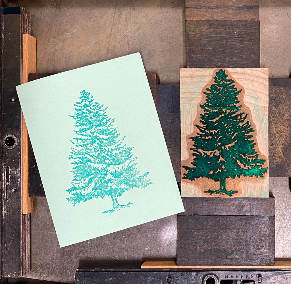 Letterpress White Pine Note Cards (blank)