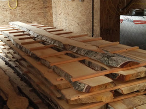 Kiln Services (Wood Drying)