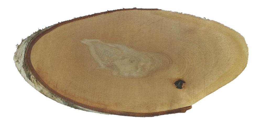 Birch Wood Oval Slab