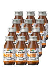 Demeter Shot Ingwer Kurkuma - Set mit 12 x 60ml - Supergsund