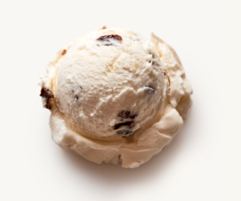 Frzn Nancys Rum Raisin Pint