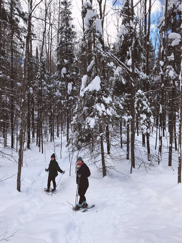 snowshoeing in northern wisconsin