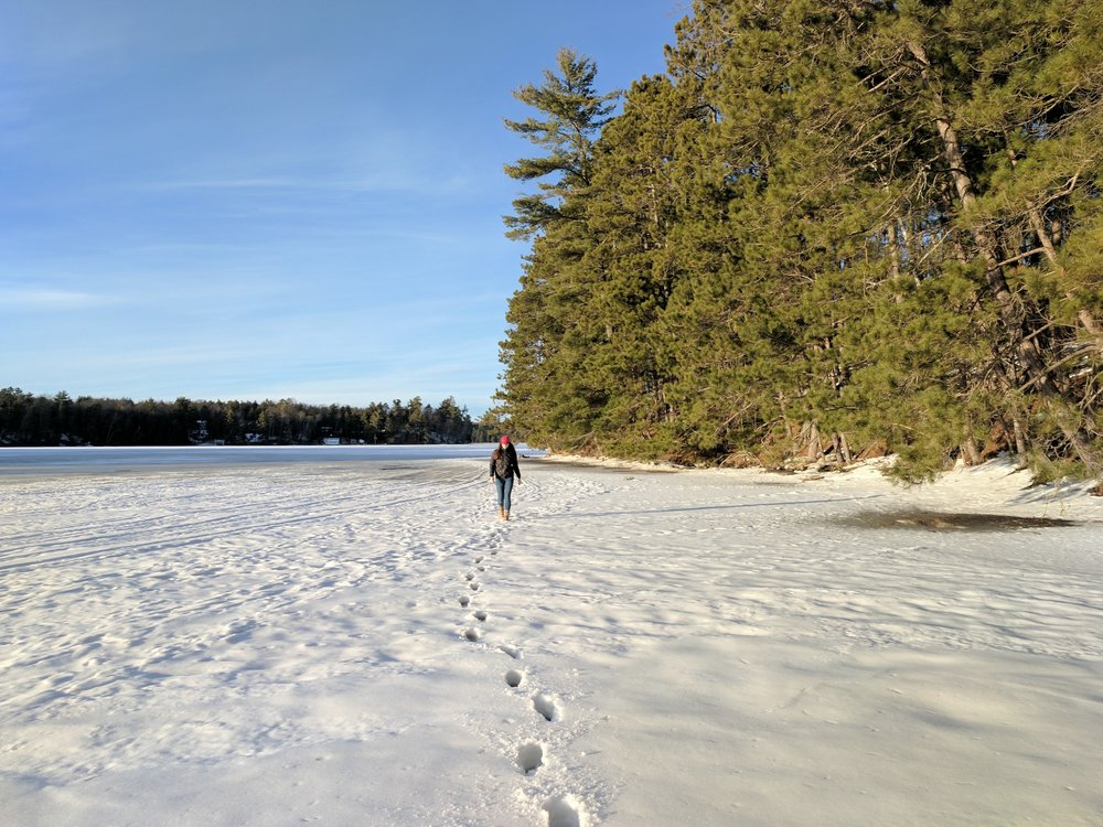 walking along the frozen lake northern wisconsin