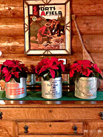 minnow bucket diy with poinsettas
