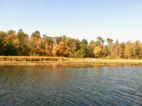 nisswa lake during fall