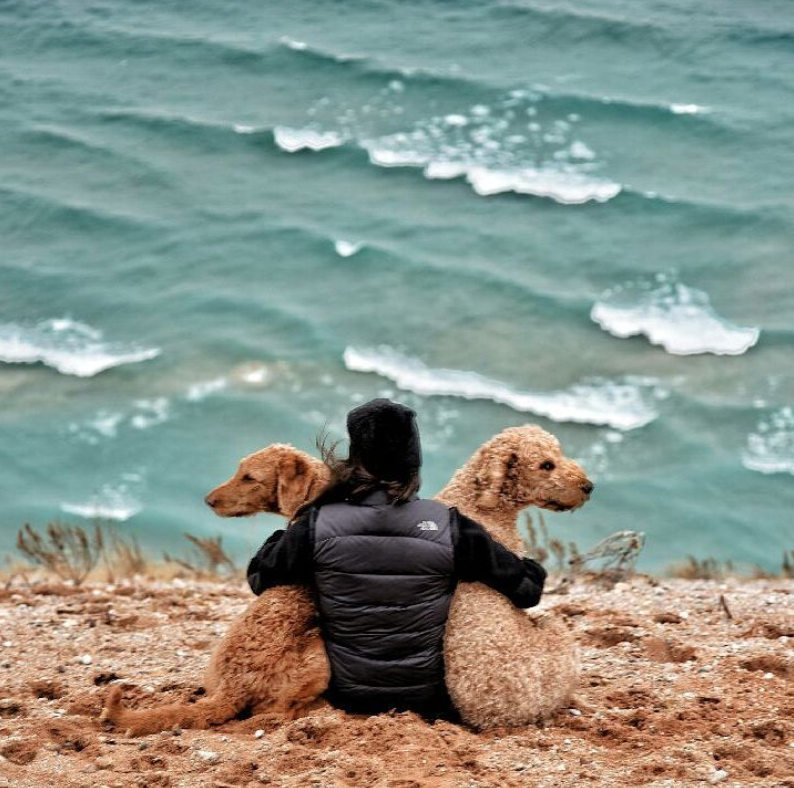 woman with two dogs looking out at lake michigan