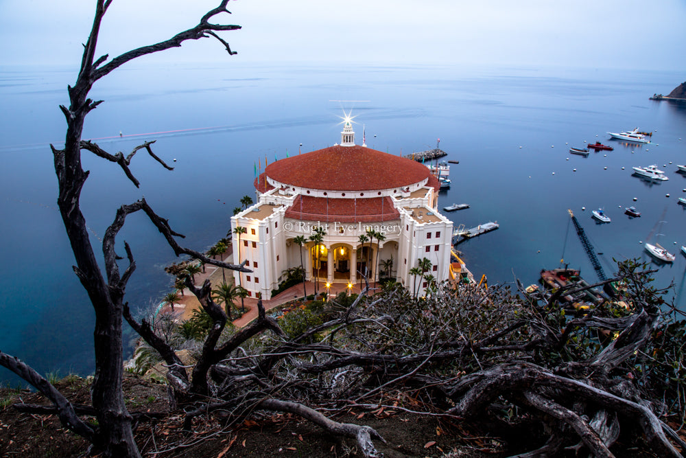 Catalina Casino at Dawn