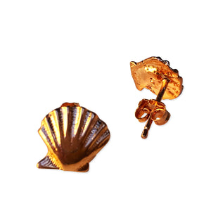 Rose Gold Plated Scallop Shell Post Earrings