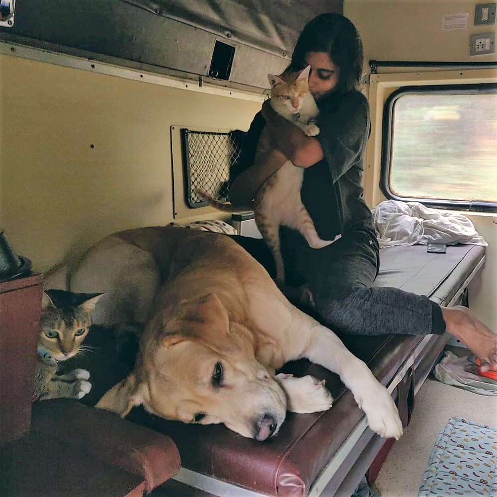 How To Travel With Your Pets In India (Railways)
