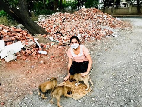 woman with stray puppies feeding