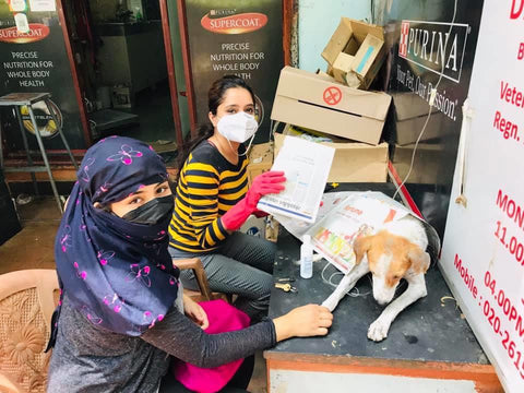 women with stray dog at veterinary clinic