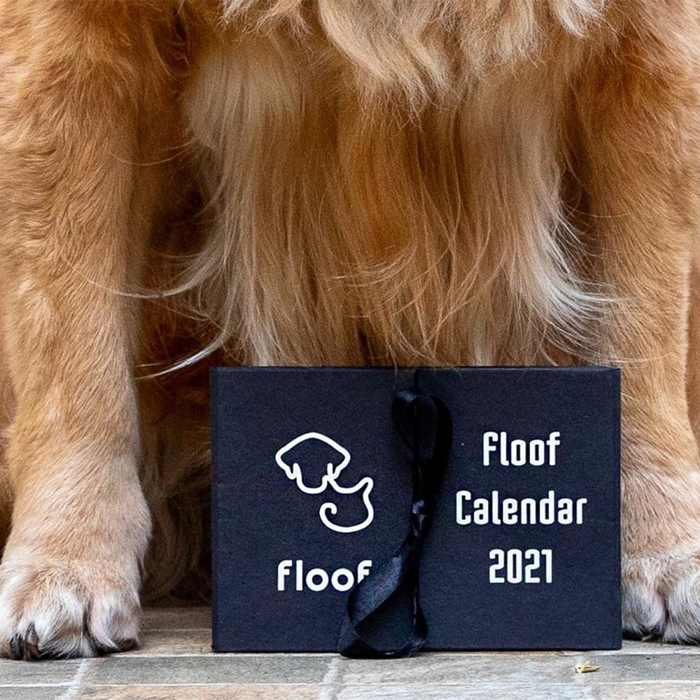 Floof 2021 Desk Calendar