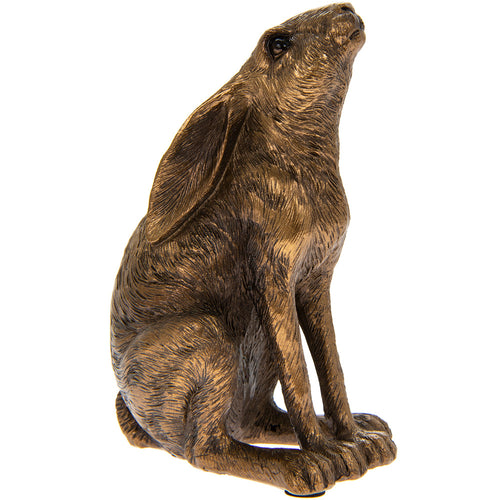 Sitting Bronze Gazing Hare