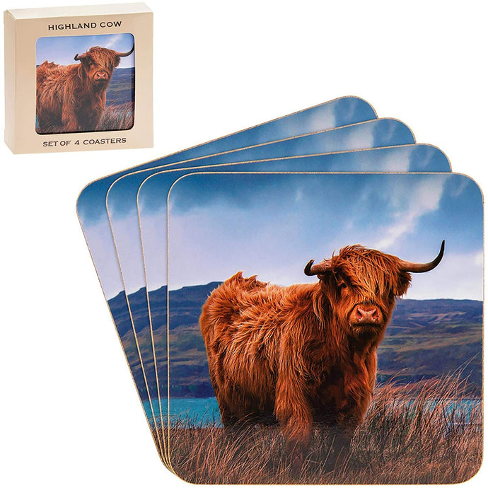 Highland Cow Set of 4 Coasters