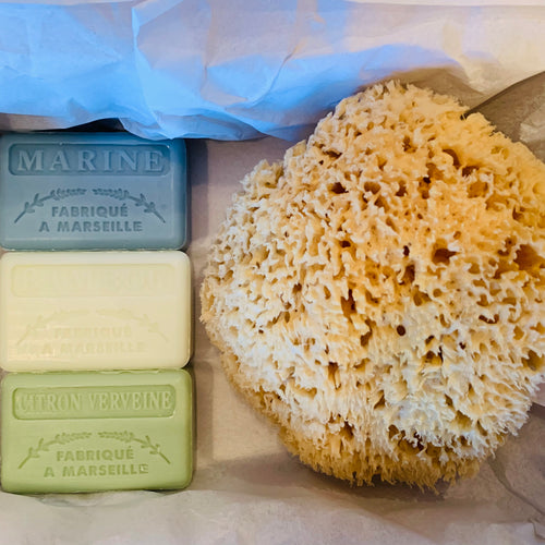 Luxury Natural Sponge and Soap Gift Set