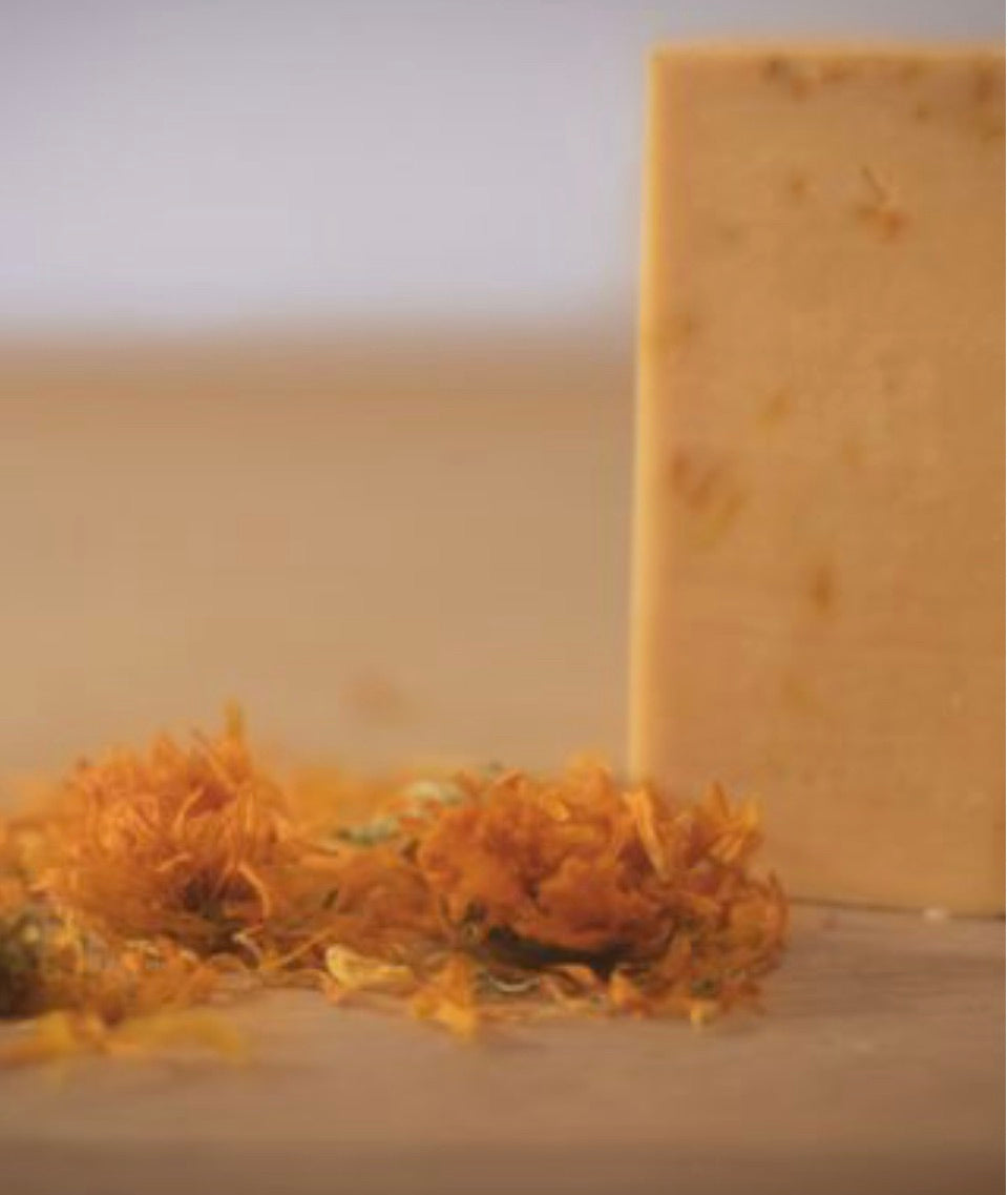 orange and calendula french soap bar